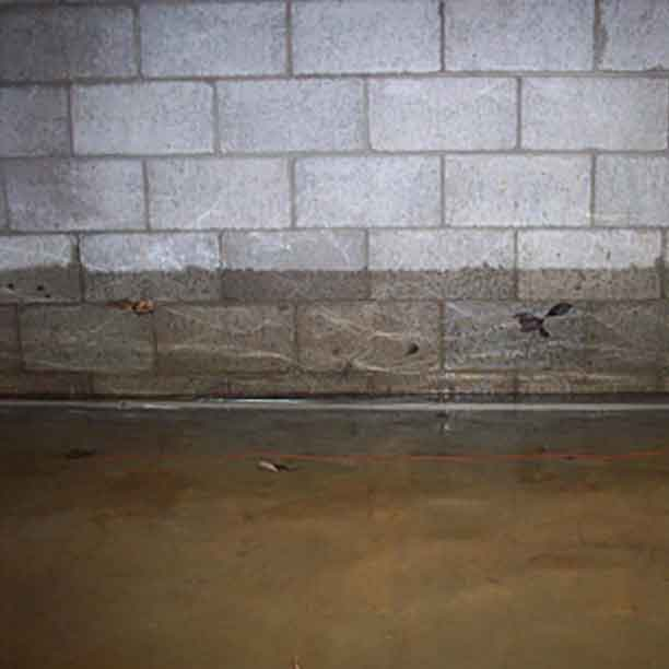 the case of the flooded basement sewers of wilmette